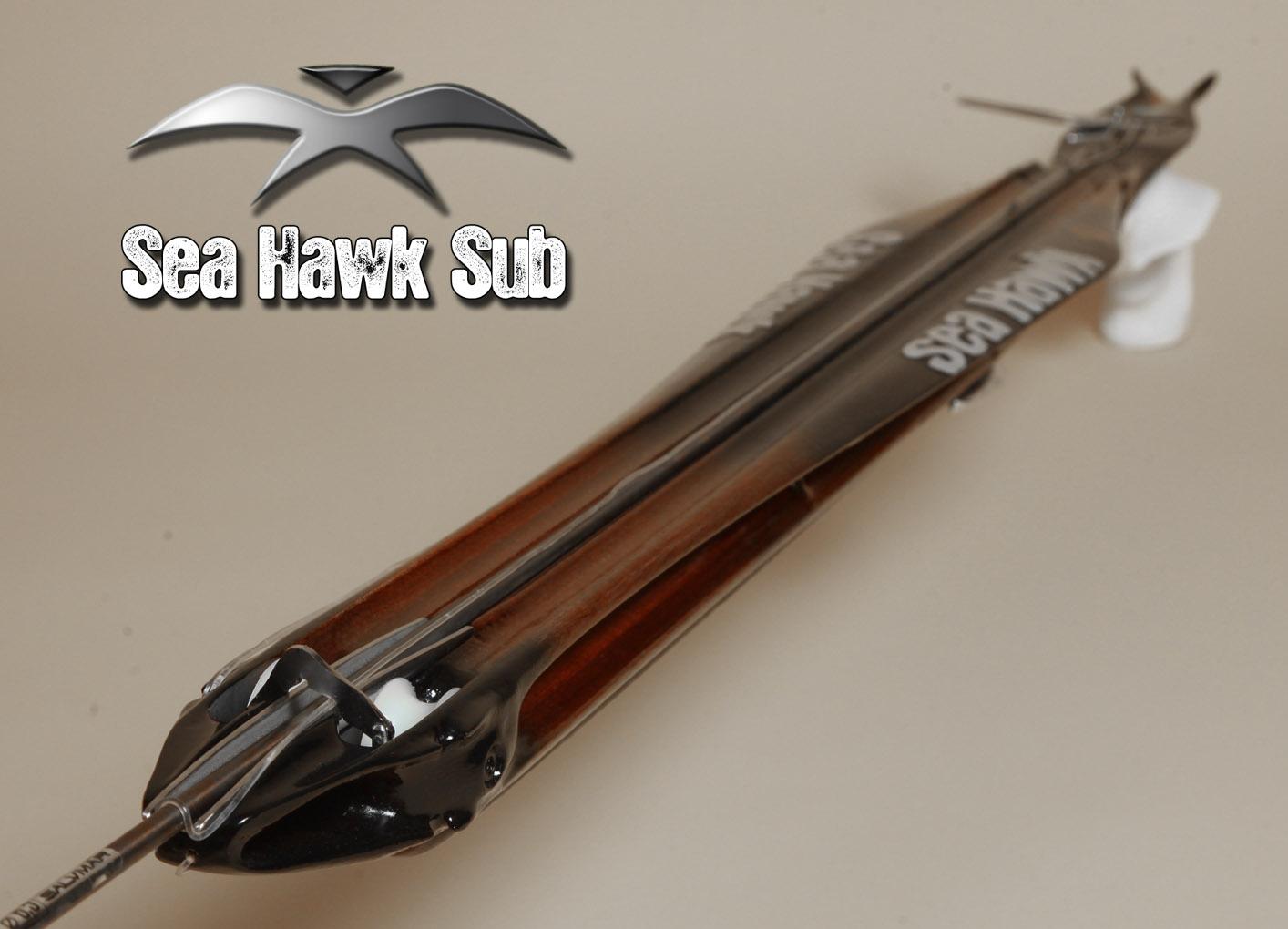 Seahawksub 001