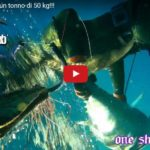 TONNO da 38 kg, One shot One Kill ed Il Sea Hawk Sub
