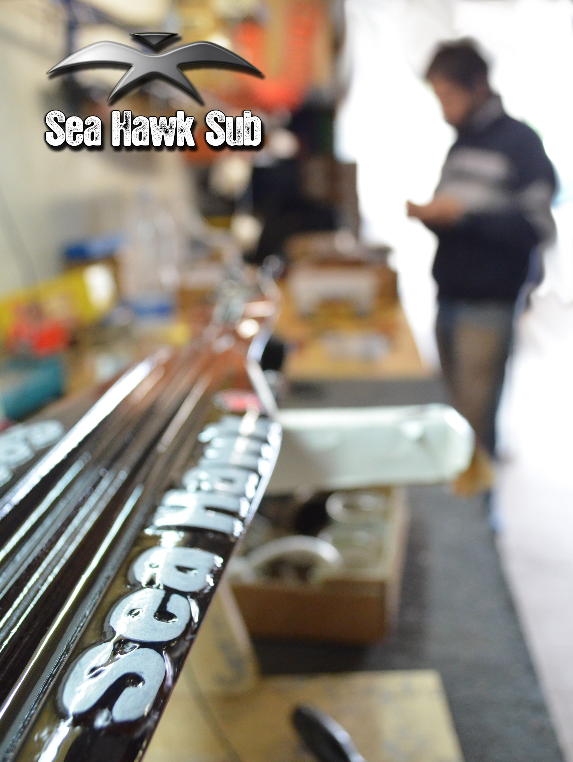 seahawksub Spearfishing pescasub