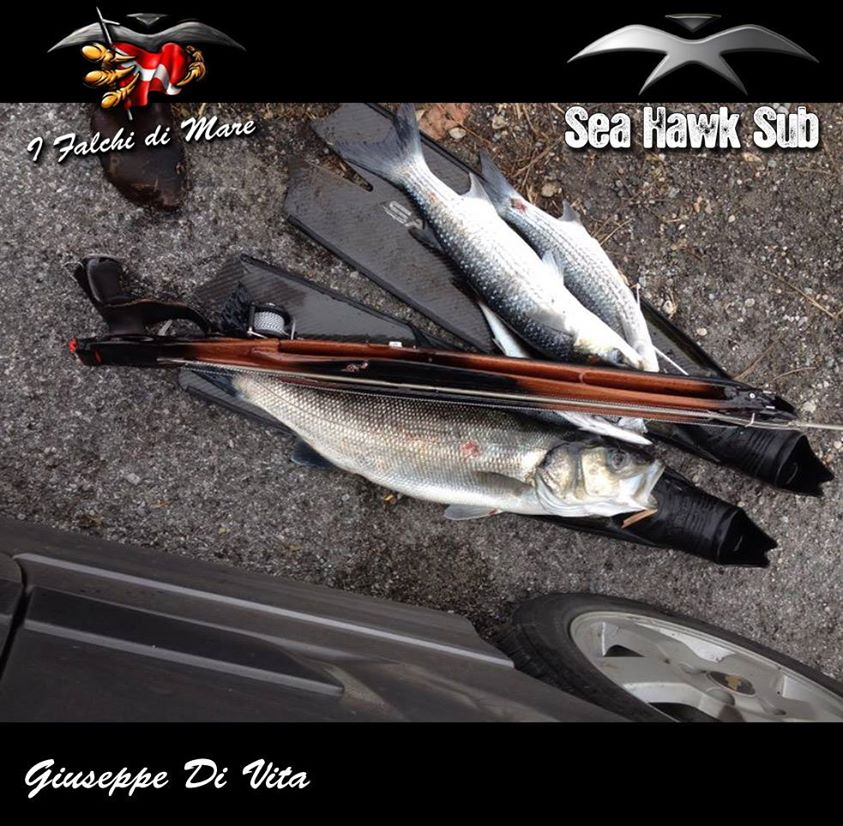 seahawksub Spearfishing pescasub 001
