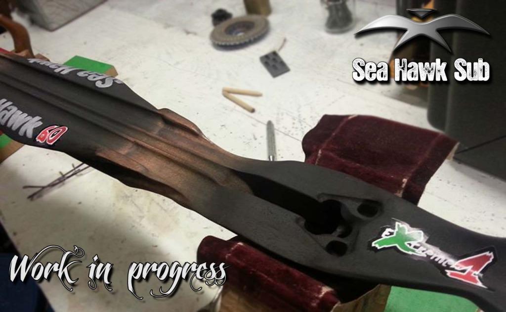 seahawksub Spearfishing  pescasub 015