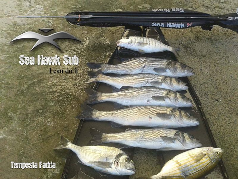 seahawksub Spearfishing pescasub 019