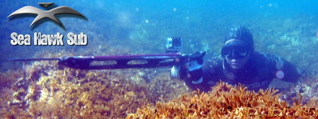 seahawksub Spearfishing  pescasub  033