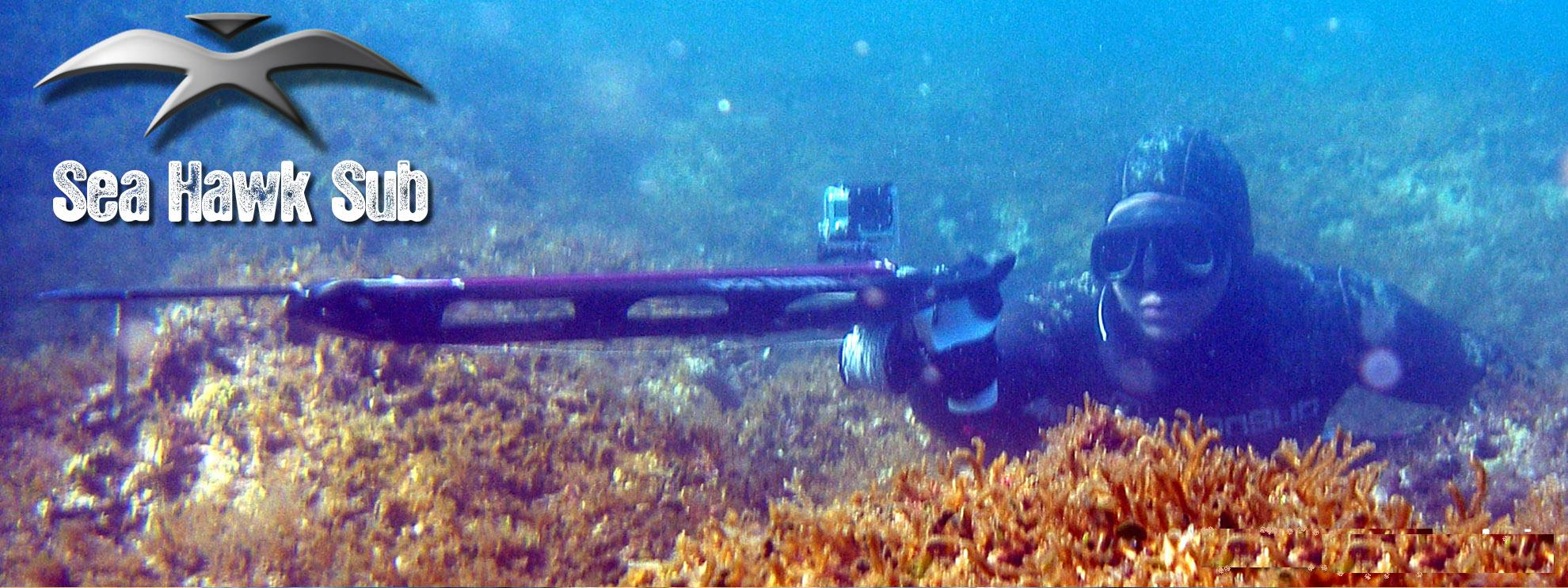 seahawksub Spearfishing pescasub 033
