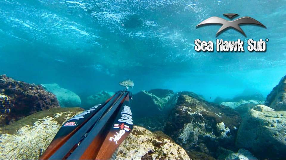 seahawksub Spearfishing  pescasub sFab 1