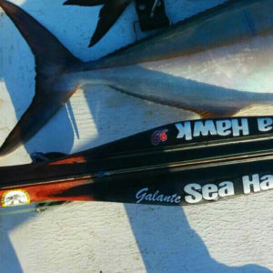 seahawksub Spearfishing  pescasub speargun nome_2