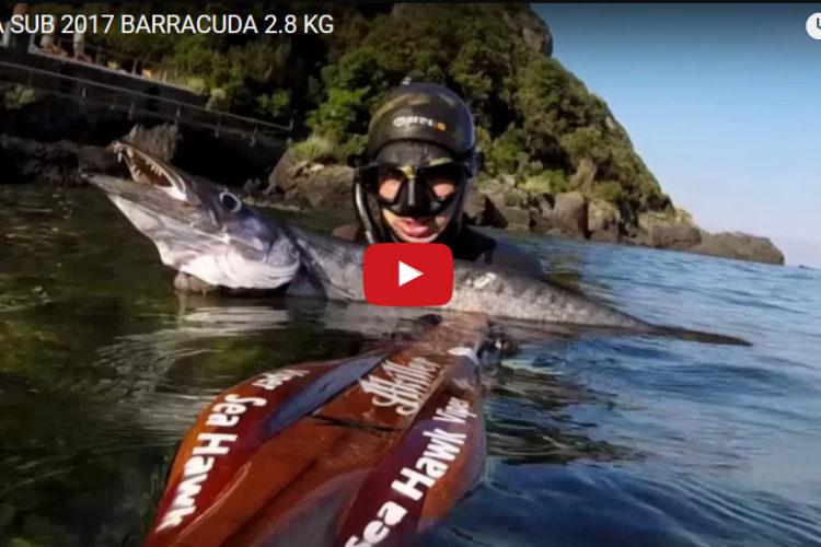 Akiller 13 barracuda 2,8