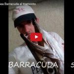 Barracuda Gigant al Tramonto