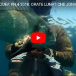 ORATE LUNATICHE JONIO E ADRIATICO (sea bream) Alberto Galante