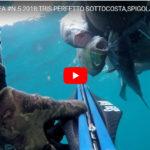 Alberto con il Veleno fa tris: Spigola, Dentice e Pesce serra.