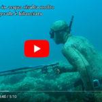 Veleno 95 …. Brandeggio SENZA PARI! ……Video presentazione di Alberto Galante