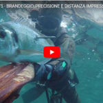 Brandeggio, precisione e distanza impressionanti…. Alp in Action