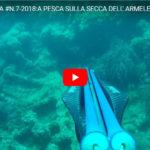#N.7-2018:A PESCA SULLA SECCA DELL' ARMELEIA VOL.1  Alberto Galante