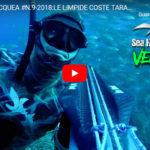 Veleno95 nelle limpide coste taratine, da 0 a 30 metri by Alberto Galante