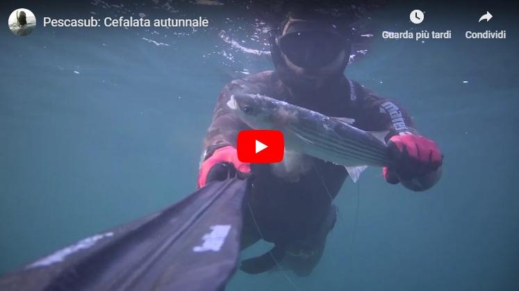 Seahawksub Sperarfishing pescasub Veleno Blackboyz 001