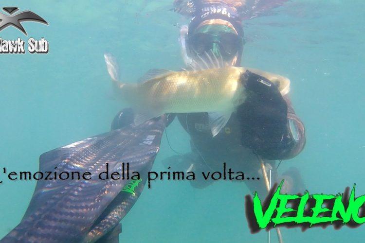 Seahawksub Sperarfishing pescasub Veleno Francesco Savino 001