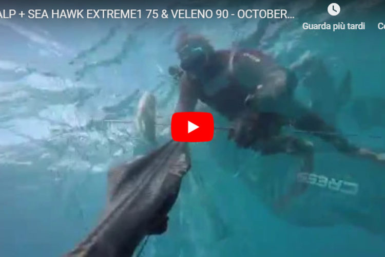 Alp026 Speargun seahawksub spearfishing pescasub veleno