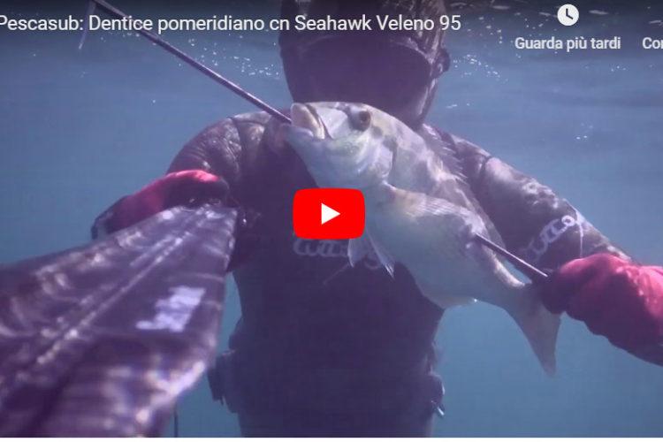 Seahawksub Sperarfishing pescasub Veleno Blackboyz 003