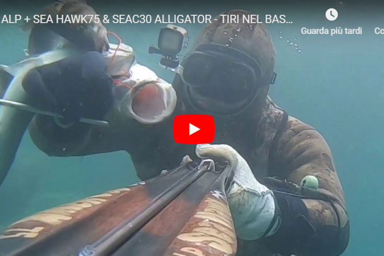 Alp027 Speargun seahawksub spearfishing pescasub veleno