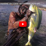 CHASSE SOUS MARINE EN CORSE SEPTEMBRE 2019 SPEARFISHING PESCASUB PESCA